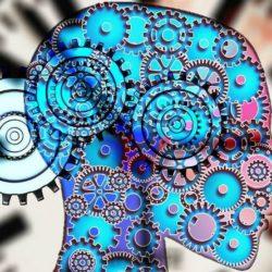 Ուղեղն աշխատունակ </br>պահելու 5 պարզ միջոց